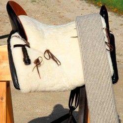 Blanket for Horses: TB
